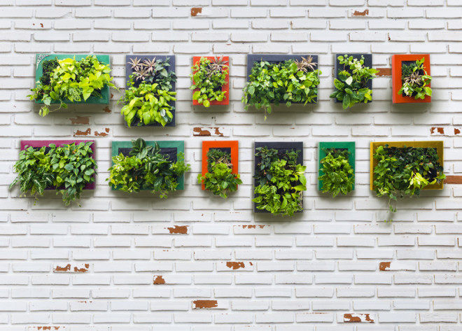 Living Gardens: A Towering Solution to Canada's Produce Dependancy
